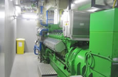 Baxter Healthcare, Combined Heat and Power Facility, Ireland
