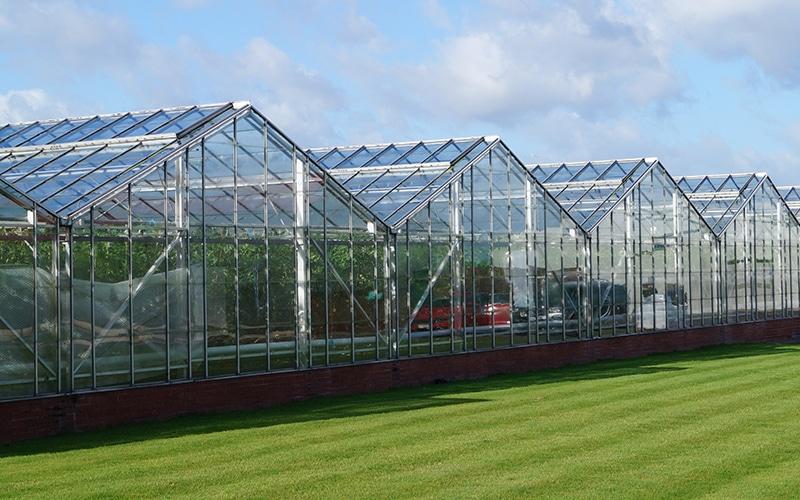 Στα αγγλικά: P3P & APS Salads Greenhouse CHP, Alderley Edge