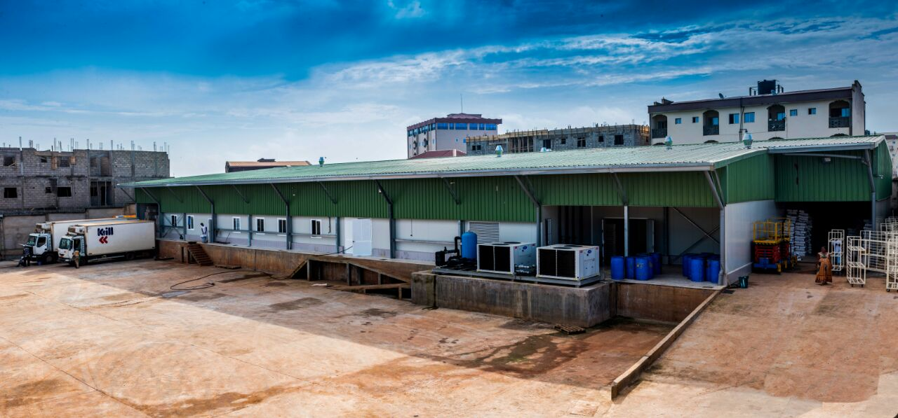 Cost-Effective, Grid-Stability Solution for Cameroon Poultry Hatchery