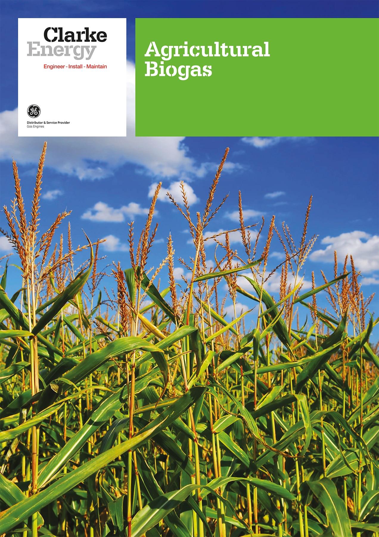 Biogas-Agriculture
