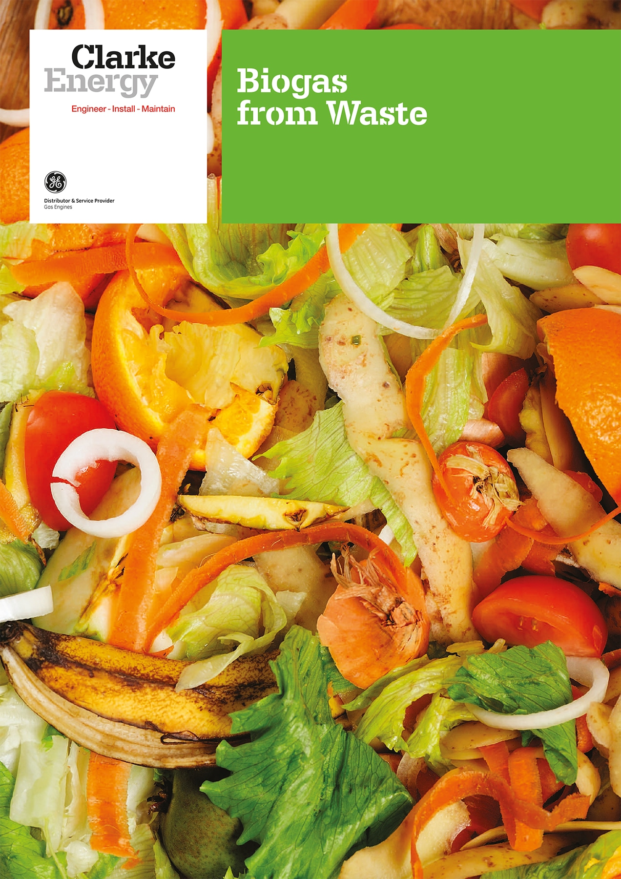 Biogas-Waste