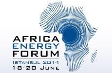 Africa Energy Forum 2014