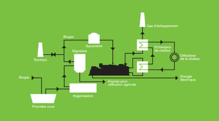 Agricultural Biogas Website