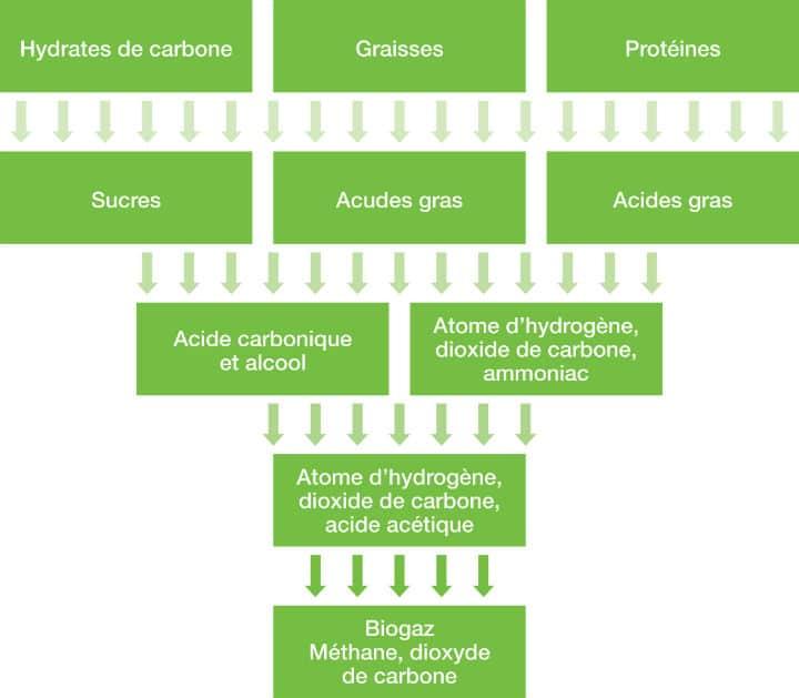 Biogaz flow chart