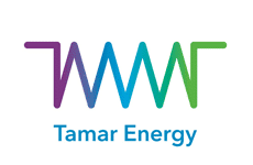 Major Biogas Engine Orders: Tamar Energy