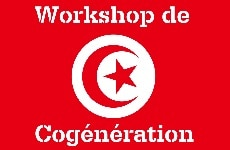 Tunisian Cogeneration Workshop